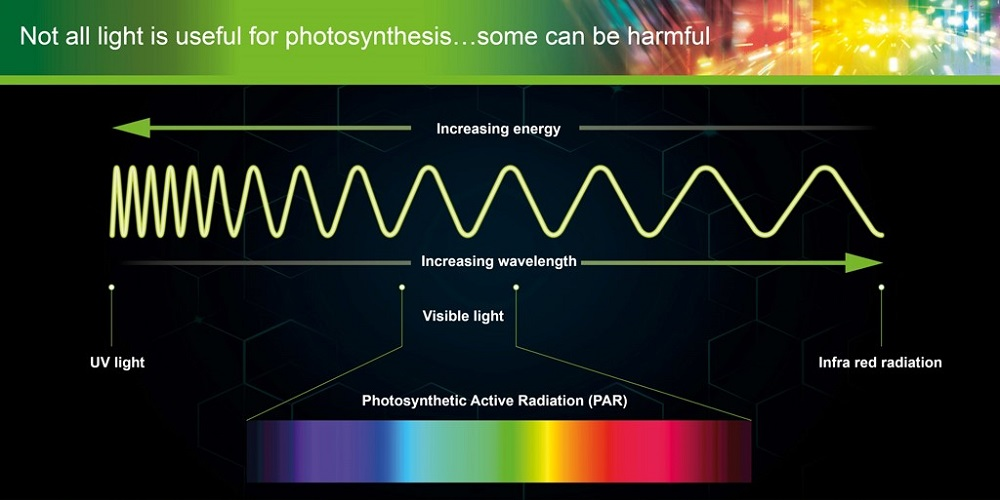 Photosynthetic Active Radiation graphic